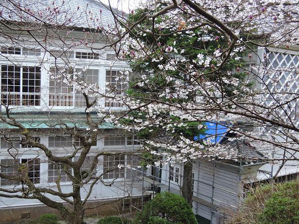 裏庭にて5.jpg
