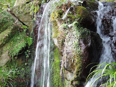 裏庭の滝.jpg