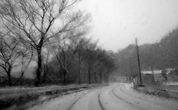 雪の中を.jpg