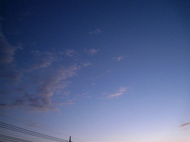 IMG_1383_1.JPG